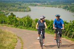 Maifeld und Mosel bieten viele Radwanderwege ohne große Steigungen Mit seiner ruhigen Lage ist das Ferienhaus Maifelder Uhlenhorst in der Eifel und in der Nähe der Mosel ideal für Kinder zum Spielen. Und die unvergleichliche Vulkanlandschaft lädt zu ausgedehnten Mountainbike- und Nordic-Walking-Touren ein.