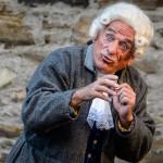 Burgfestspiele Mayen, Amadeus